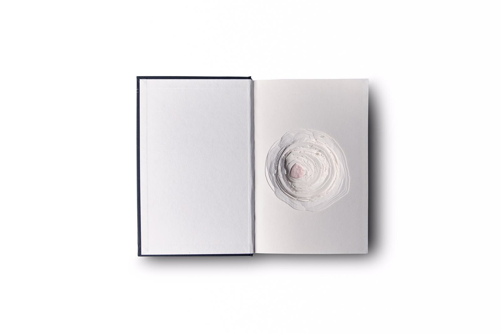 Eda Aslan, Blind Well, book, 2015.