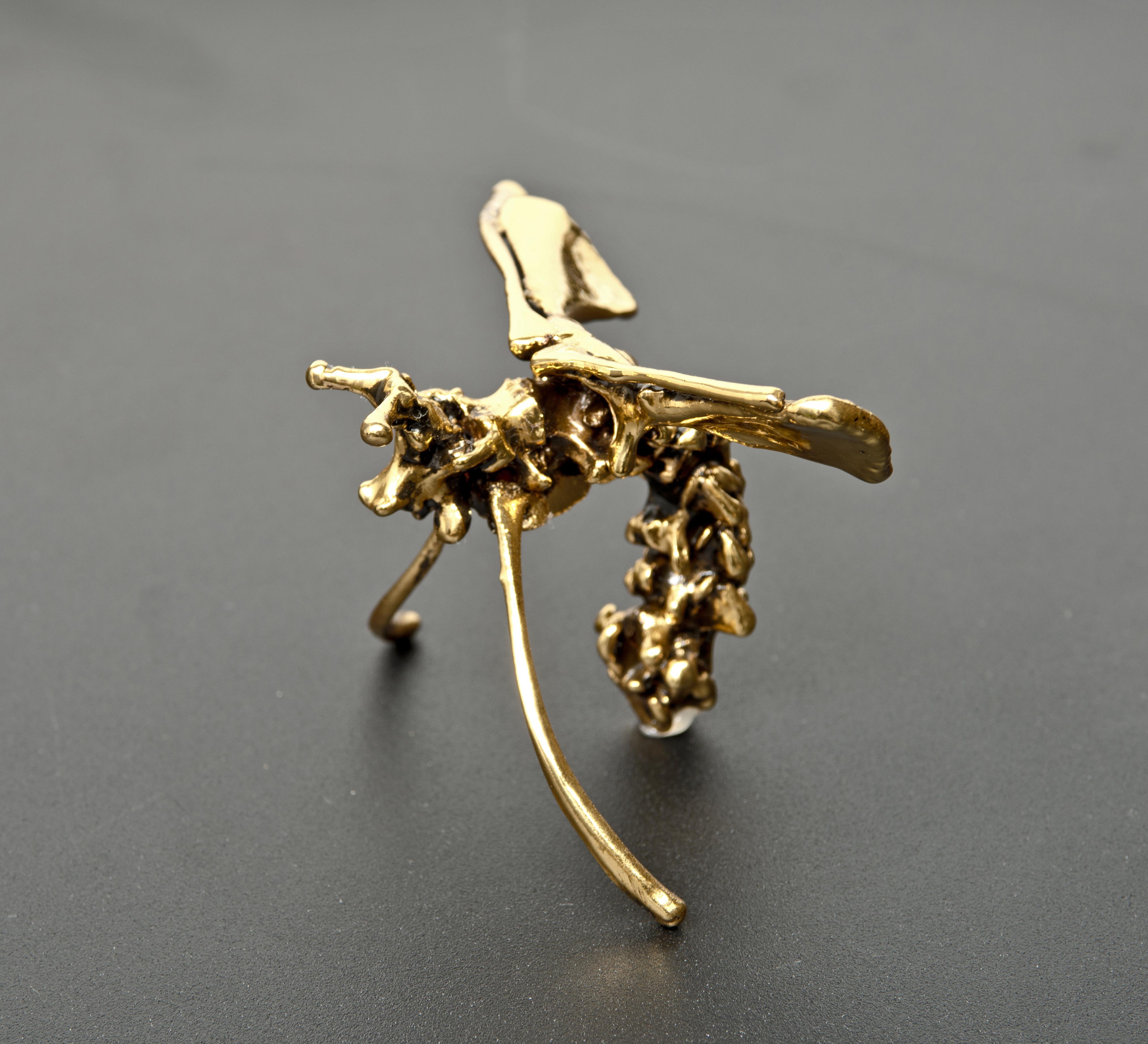 Ekin Saclioglu, Gold plating on various animal bones, 10x6x6cm_2014