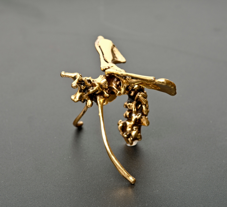 Ekin Saclioglu, Gold plating on various animal bones, 10x6x6cm_2014